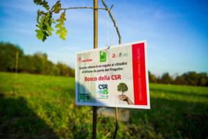 il Bosco della CSR