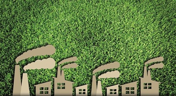 Filiere green: lo sviluppo di servizi per valutare la sostenibilità ambientale