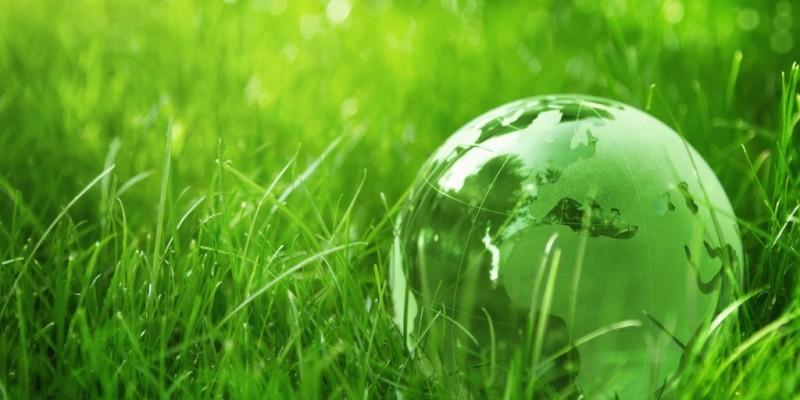 Sostenibilità in agricoltura: opportunità di produzione e di reddito