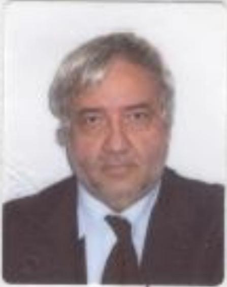 Angelo Gava